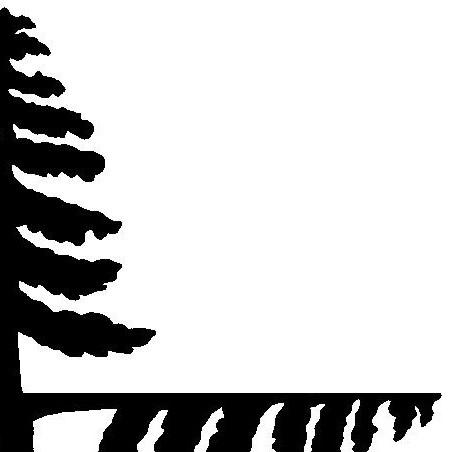 sapin, arbre, décor, silhouette, marionnette, ombre chinoise, theatre d`ombres, free
