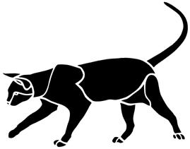 chat en théâtre d`ombres chinoises silhouette marionnette animal