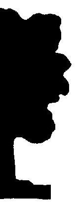 arbre décor personnage en théâtre d`ombres ombres chinoises silhouette marionnette