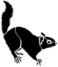 écureuil, Henri Dès, animal, chanson, ombres chinoises, theatre d`ombres, silhouettes, marionnettes