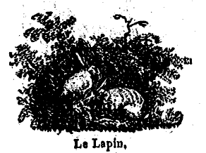 lapin, ombres chinoises, theatre d`ombres, silhouettes, marionnettes, free, chinese shadows, schatten theater