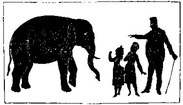 leçon de zoologie en théâtre d`ombres ombres chinoises marionnettes silhouettes chinese shadow